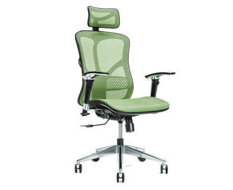 Ergonomické kancelářské křeslo ERGO 500 zelené